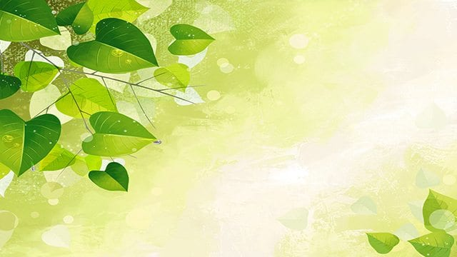 background-green-leaves-abstract