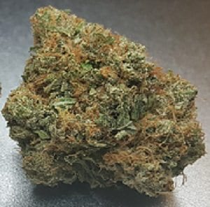 Chem Dawg 300 featured image
