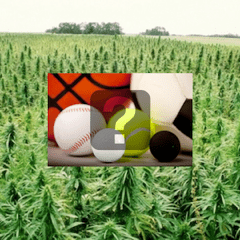 farm bill for sports feature