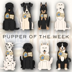Meet Our PUPPERS OF THE WEEK, Nina And Skylar!